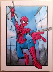 Birthday Painting - Spider-Man by muffinshire