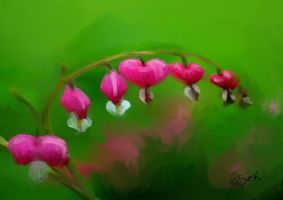 Bleeding Hearts by DreamingMerchant