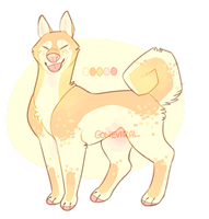 [closed] summer mango shibe by GoneViral