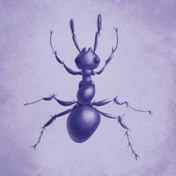 Purple ant drawing by azzza
