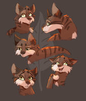 Leafpool sketches by Nightfeather123