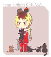 HPBD Kenma by Acaelith