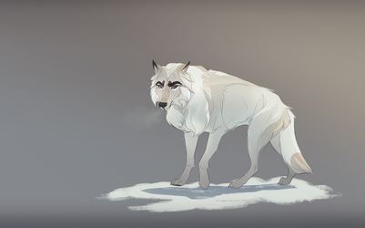 Highvalley wolf by Roiuky