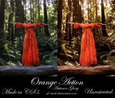 Orange Action by sd-stock
