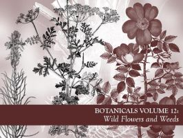 Botanicals Vol 12 by remittancegirl