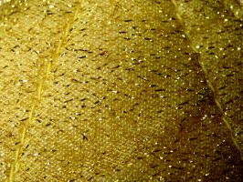 Golden Fabric Texture by FantasyStock