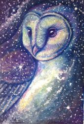 Tyto Galaxy by DanielleMWilliams