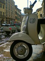 Vespa Special 50 by Quadraro