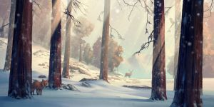 Winter forest by HjalmarWahlin