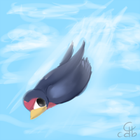 Taillow Speedpaint