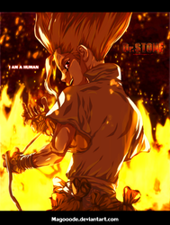 I am a human.dr.stone by Magooode