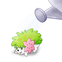 shaymin by Pyritie