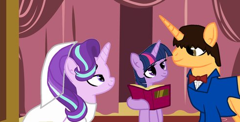 Me and Starlight's wedding at Town Hall by CrazyCartoonFanatic