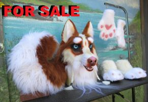 Red Husky SOLD by LilleahWest