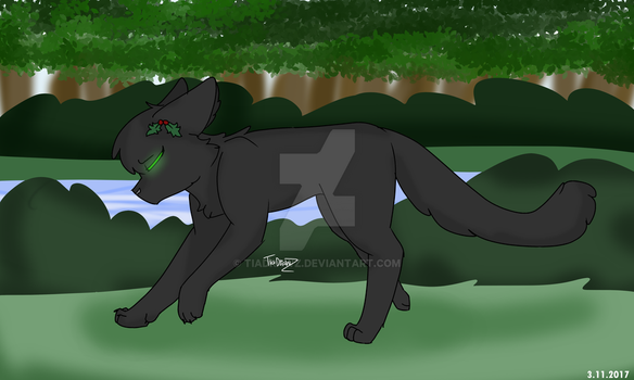WARRIOR CATS By TiaDrawZ On DeviantArt