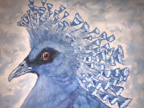 Victoria Crowned Pigeon Detail final by mojoantman
