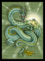 Chinese Dragon by m-lupus