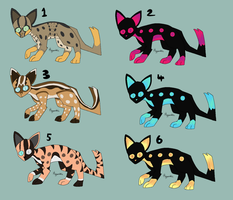 Rusty-spotted Cat Adopts Closed by hypnodealic