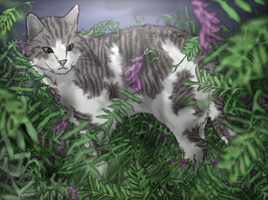 Ivypool by Frozenfir