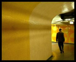 yellow line by miemo