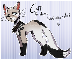 Feline Adopt|Auction(SB 400)|CLOSED by Claw-kit
