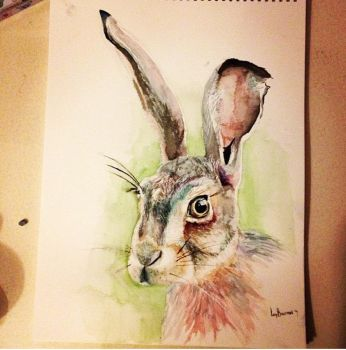 Hare - watercolour by 12LucyJ34