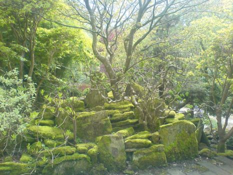 Japanese Garden - 19 by 5-More-Minutes
