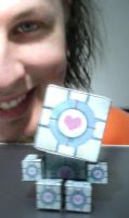 Companion Cube Papercraft by mikeInside