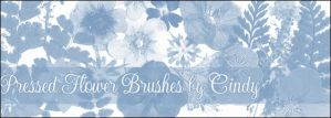 Pressed Flower Brushes by HoneyCunt
