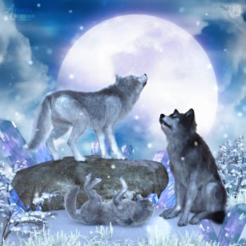 Singing to the Wolf Moon by RavenMoonDesigns