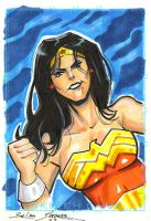 another wonder woman card by gravyboy