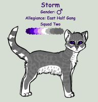 Storm Ref by InvaderTigerstar