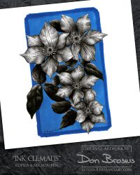 Ink Clematis by Donny-B
