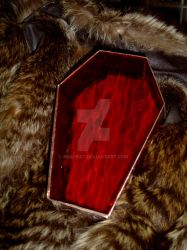 Stained Glass Coffin by NekoBat