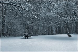 After The Snowfall by IgorLaptev
