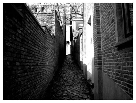 Alley by marchofdead