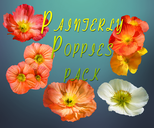 Painterly Poppies by BrookeGillette