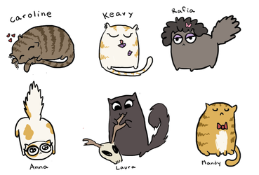 CATS by MissusHow