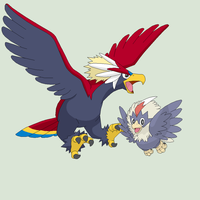 Pokemon Base 76~Rufflet Evolution~