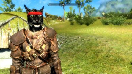Picture of my Skyrim Khajit character by Lakword