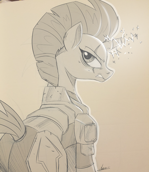 Charity Comm - Tempest Shadow by NCMares