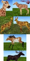 Arokai - Some Deer Markings by Rasiris