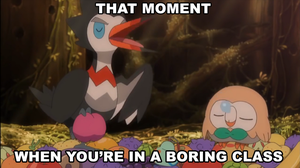 Trumbeak and Rowlet Meme by Wildcat1999