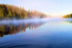 Fog on the lake by KariLiimatainen
