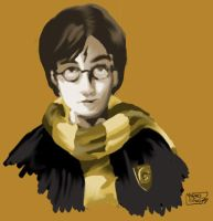 Harry Potter by michan