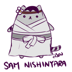TRxPusheen: Sam Nishinyara by diav