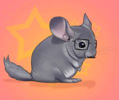 Hipster chinchilla kawaii by uialwen