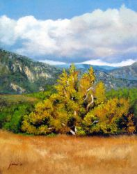 Sycamore Tree Valley by Ravenhaven