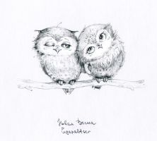 owls by ingapaltser