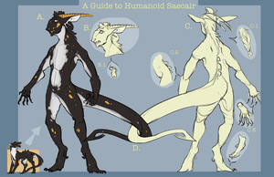 A Guide to Humanoid Saecair by Stitchy-Face